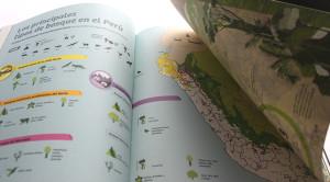 El reino de los ecologistas eternos 6