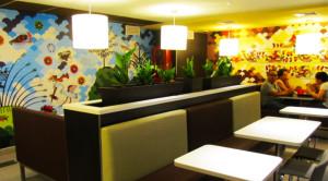 McDonalds Trujillo 3
