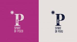 partes_PISCO